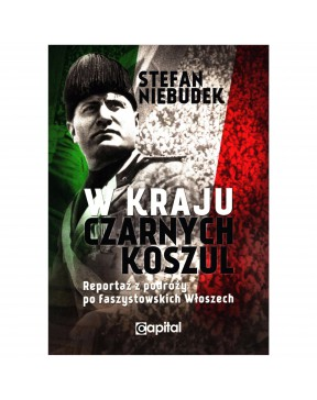 Stefan Niebudek - W kraju...